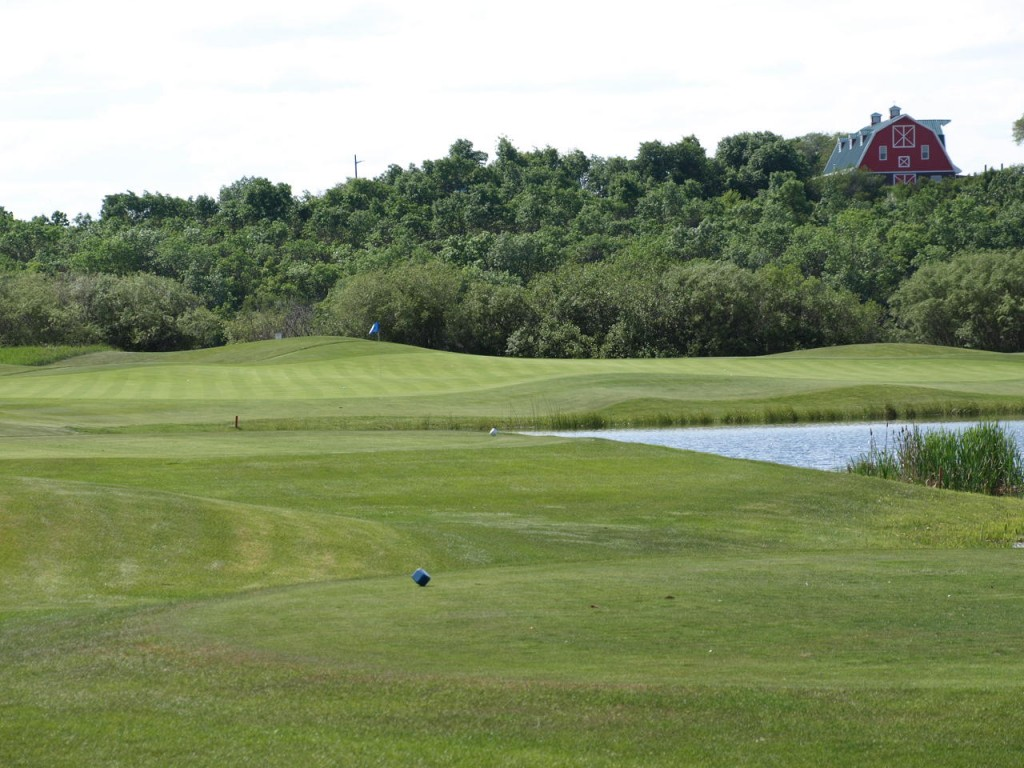 Another immaculate green - Hole #8 on The Moors