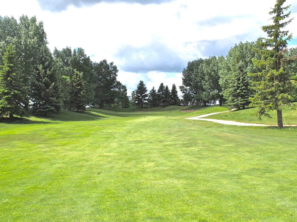 Tree lined approach to second green on The Bridges